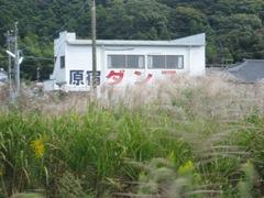 IMG_0029 原宿ダンス1.JPG