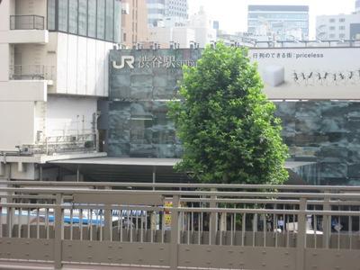 IMG_0927 渋谷1.JPG