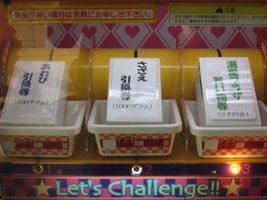 IMG_0054 潮騒王国9.JPG