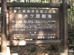 IMG_0086 富士2.JPG